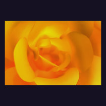 Kindled Rose Print