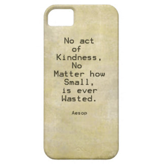 Kindness Compassion Quote Aesop iPhone 5/5S Cases