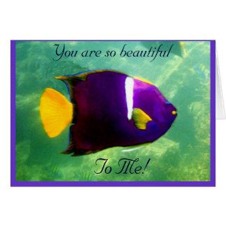 King Angelfish Card