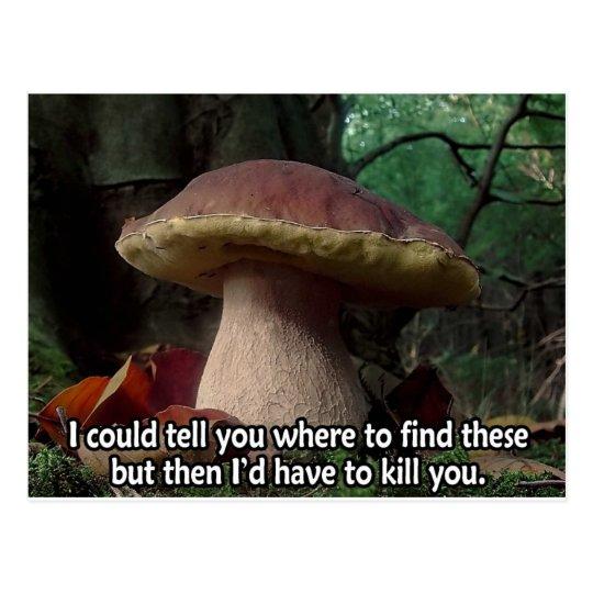 King Bolete - I'd Have to Kill You Postcard