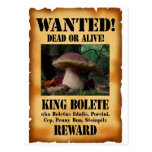 King Bolete - Wanted Dead or Alive Postcard