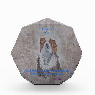 King Cavalier Spaniel Award