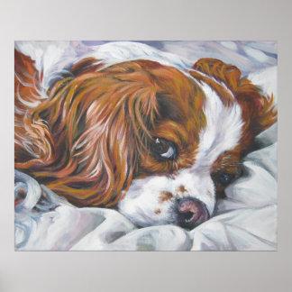 king charles cavalier spaniel blenheim art print