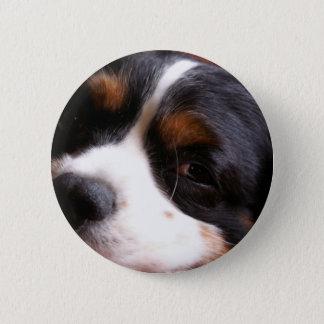 King Charles Cavalier Spaniel Round Button