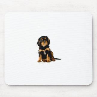 King Charles Spaniel Black & Tan Mouse Pad