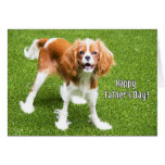 King Charles Spaniel Happy Father's Day Card