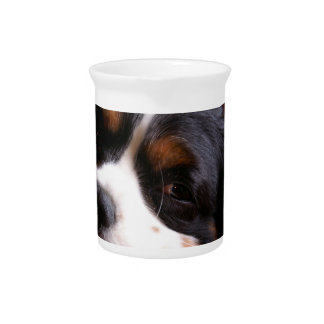 King Charles Spaniel  Pitcher