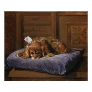 King Charles Spaniel Posters