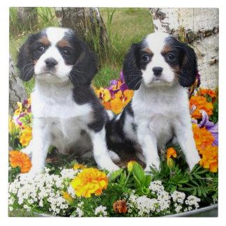 King Charles Spaniel puppies Ceramic Tile