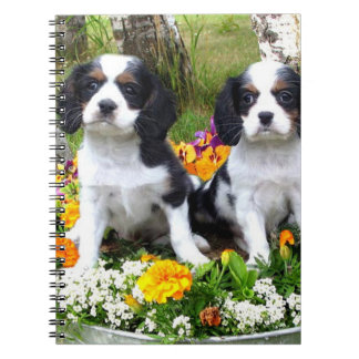 King Charles Spaniel puppies Notebook