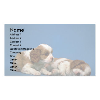 King Charles Spaniel pups Double-Sided Standard Business Cards (Pack Of 100)
