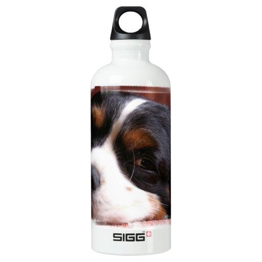 King Charles Spaniel  SIGG Traveler 0.6L Water Bottle