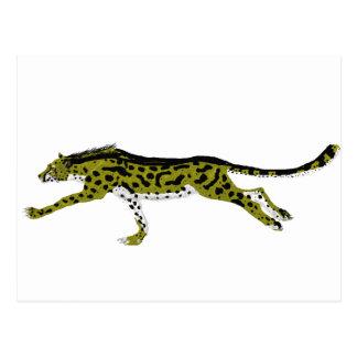 King Cheetah Postcard