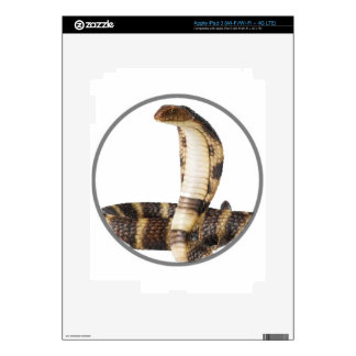 """""""King Cobra 2"""" Decals For iPad 3"""