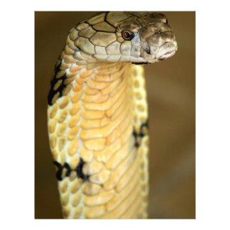 king cobra letterhead