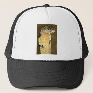 king cobra trucker hat