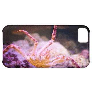 King Crab Case For iPhone 5C