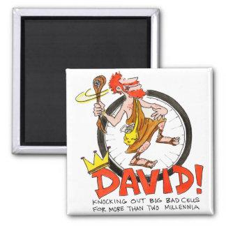 King David Pin Magnet