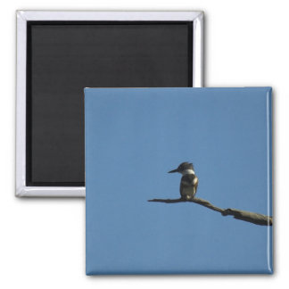 King Fisher 2 Inch Square Magnet