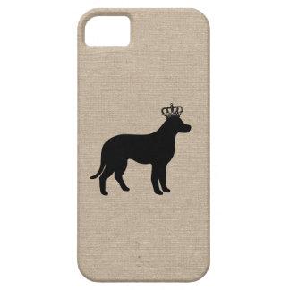 King labrador retriever shabby puppy dog chic dogs iPhone SE/5/5s case