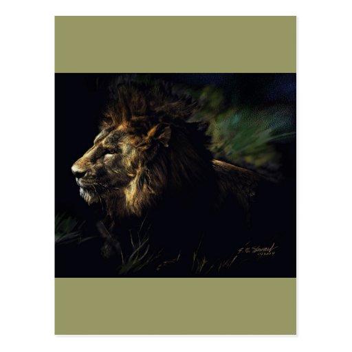 King of Beasts Postcard