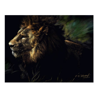 King of Beasts Post Card