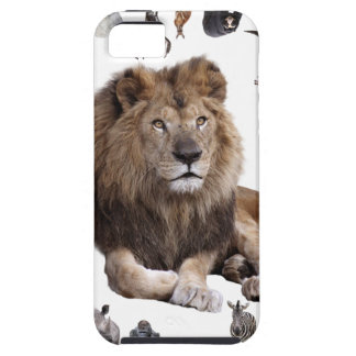 King of hundred animals iPhone SE/5/5s case