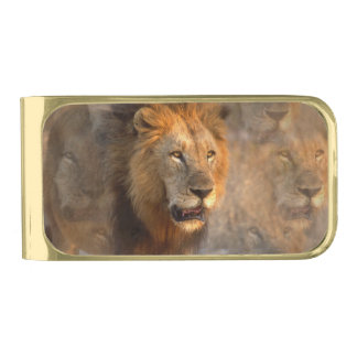 King of Jungle Gold Finish Money Clip