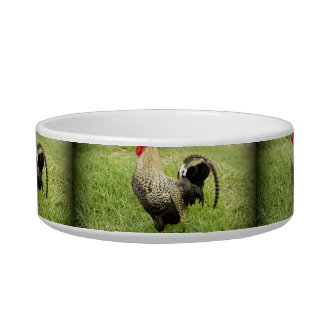 King of the Farm Cat Water Bowls