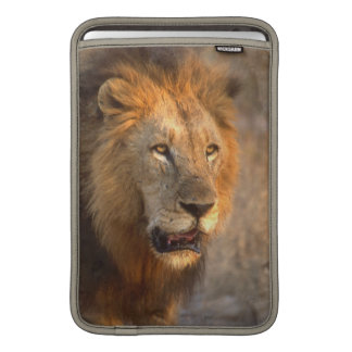 "King of the Jungle 11"" MacBook Sleeve"