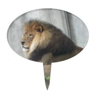 King of the Jungle Cake Topper