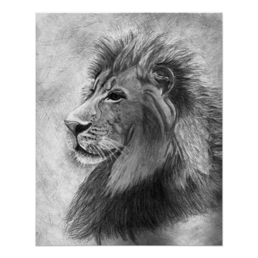 King of the Jungle, Hand drawn Lion in Graphite Poster