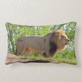 King of the Jungle Lumbar Pillow (Lion)