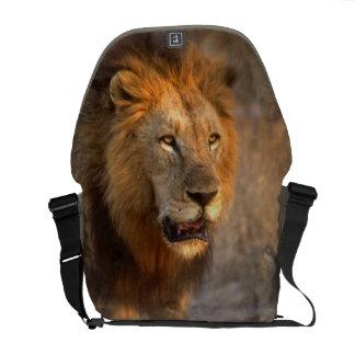 King of the Jungle Messenger Bag