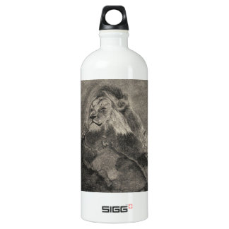 King of the Mountain Aluminum Water Bottle