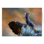 King of the Mountain Stationery Note Card