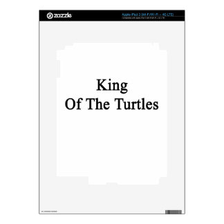 King Of The Turtles iPad 3 Skin