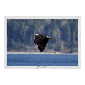 """KING OF THE WIND"" Canvas Photo Print"