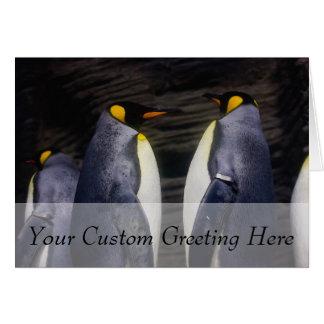 King Penguin, Animal Photography Card