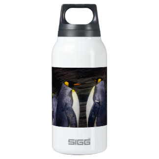 King Penguin, Animal Photography Insulated Water Bottle