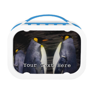 King Penguin, Animal Photography Lunch Box