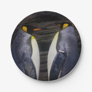 King Penguin, Animal Photography Paper Plate