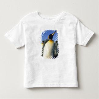 King Penguin, (Aptenodytes patagonicus), 2 Toddler T-shirt