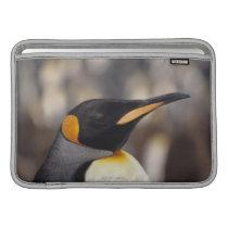 King penguin (Aptenodytes patagonicus) MacBook Sleeve