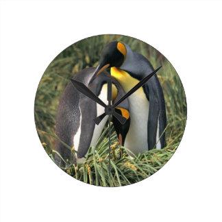 King Penguin Lovers Round Clock