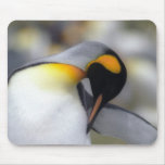 King penguin mouse mat
