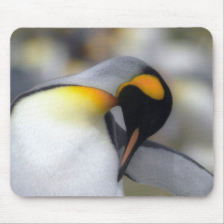 King penguin mouse pad