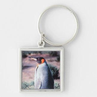 King Penguin on Heard Island Keychain