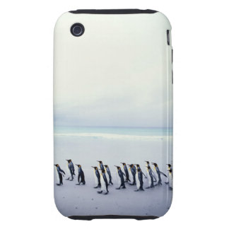 King penguins Aptenodytes patagonicus Tough iPhone 3 Cases