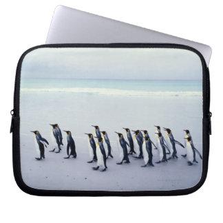King penguins (Aptenodytes patagonicus) Computer Sleeve